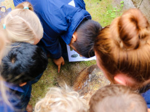 Digging for Bugs at Forest School